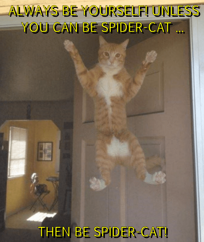 ALWAYS BE YOURSELF! UNLESS YOU CAN BE SPIDER-CAT ...  THEN BE SPIDER-CAT!