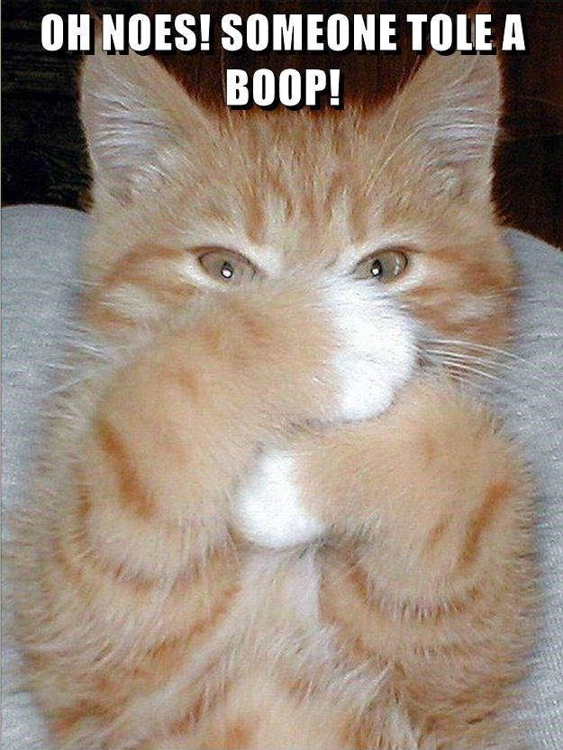 OH NOES! SOMEONE TOLE A BOOP!