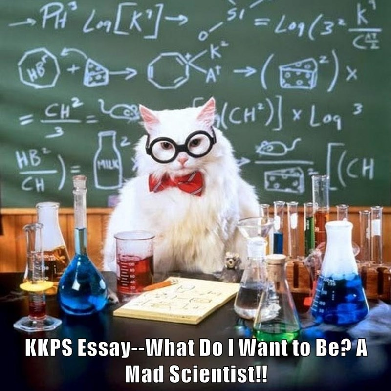 KKPS Essay--What Do I Want to Be? A Mad Scientist!!