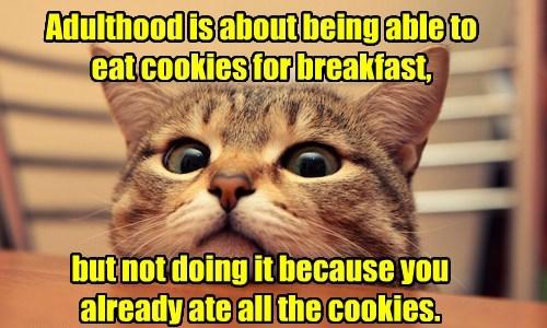 I Like Cookies