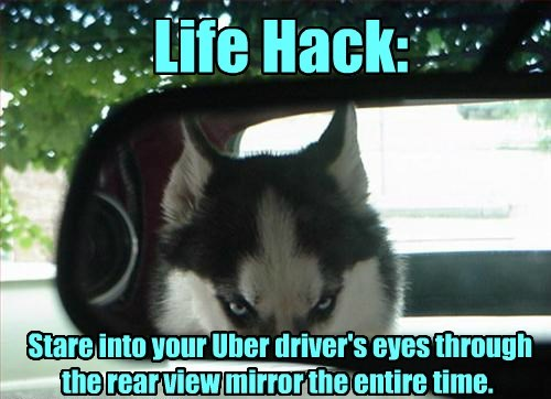 Life Hack: Stare into your Uber driver's eyes through the rear view mirror the entire time.