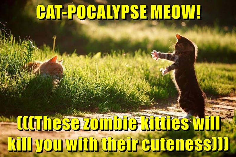 Cats cute caption zombie - 8773361664