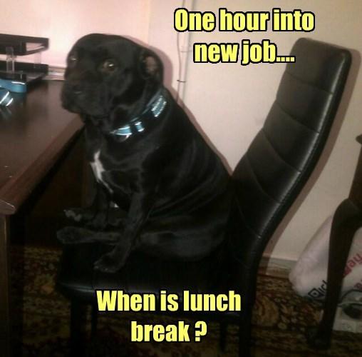 When is lunch break ?