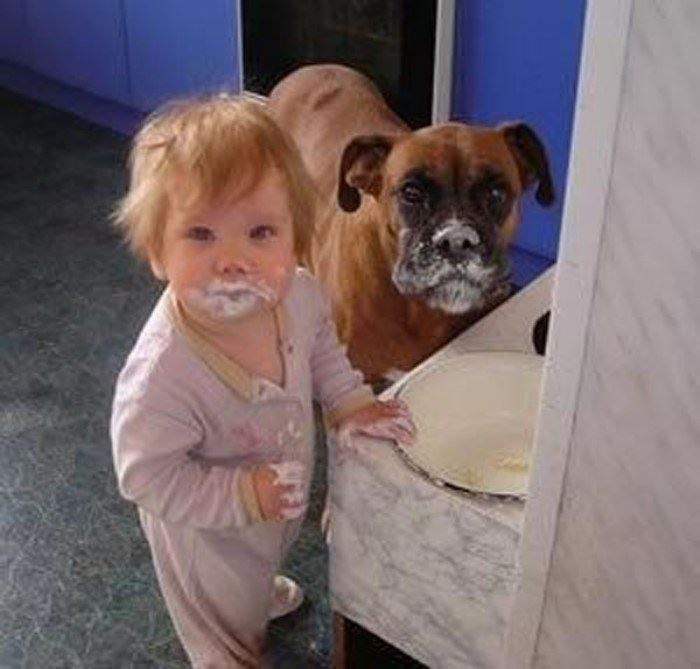 toddler and dog caught sharing a messy snack