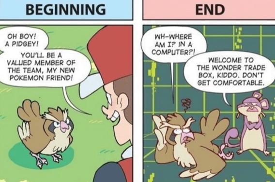 pokemon-logic-wonder-trade-box-zigzagoon