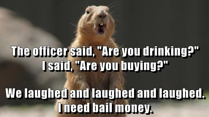 """The officer said, """"Are you drinking?""""         I said, """"Are you buying?"""" We laughed and laughed and laughed. I need bail money."""