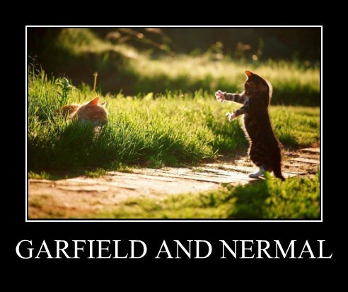 GARFIELD AND NERMAL