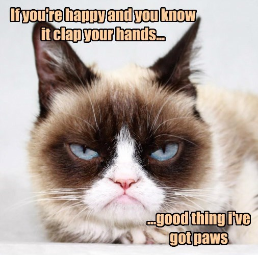 Grumpy Cat,clap,caption,Cats