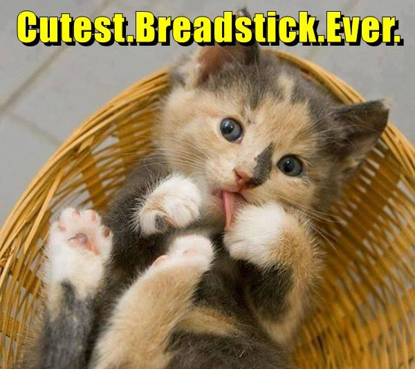 Cutest.Breadstick.Ever.