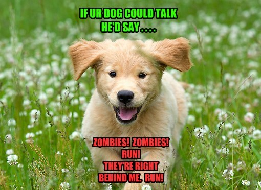IF UR DOG COULD TALK HE'D SAY . . . . ZOMBIES! ZOMBIES! RUN! THEY'RE RIGHT BEHIND ME. RUN!