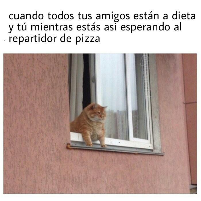 esperando pizza