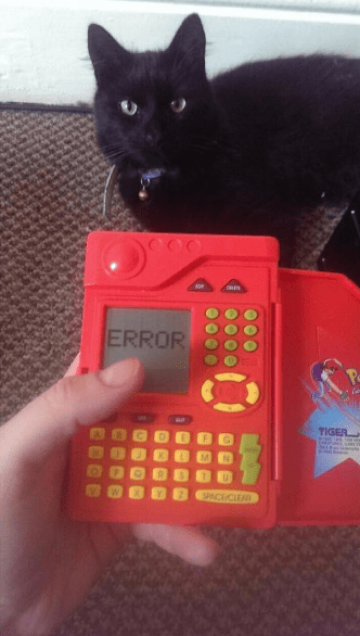 pokemon-pokedex-error-black-cat-funny