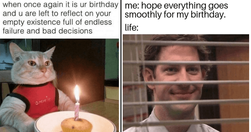 Funny birthday memes, jim from the office, cat memes, birthday cat memes, failure, depressing birthday memes and sarcastic birthday memes.