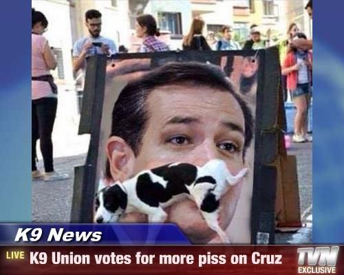 K9 News - K9 Union votes for more piss on Cruz