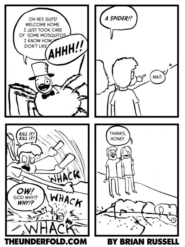 spider-kills-mosquitoes-helpful-ends-up-squashed-web-comics