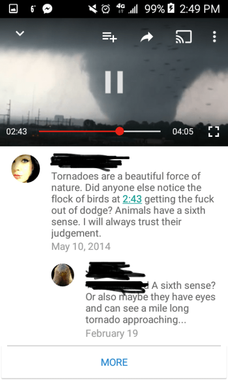 image youtube nature Still Probably a Decent Bet to Trust an Animal's Instincts