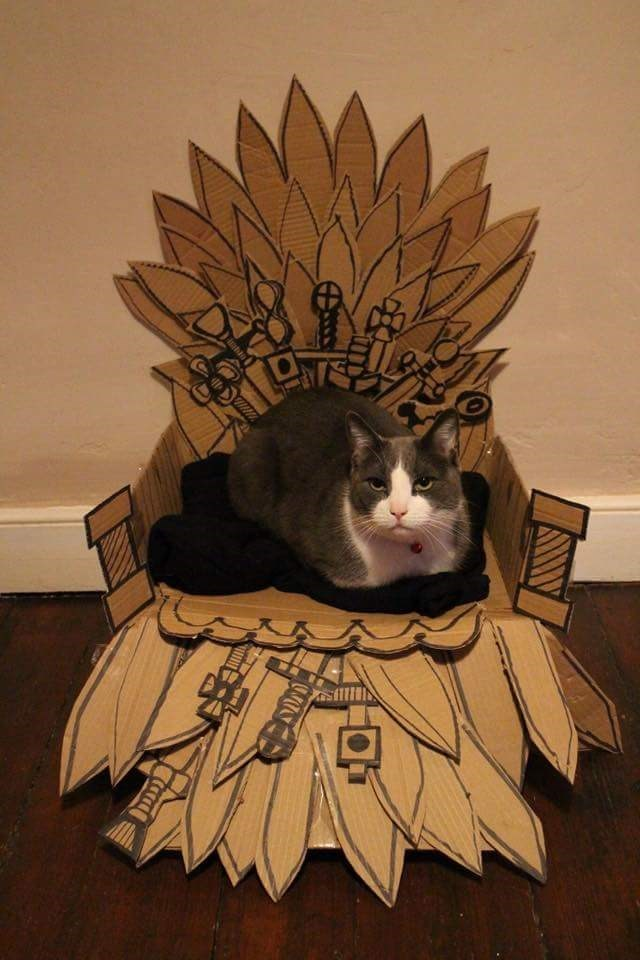 the one true king of westeros