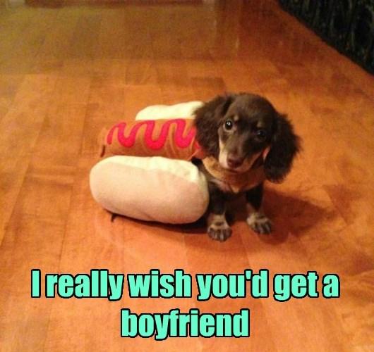 boyfriend,dogs,wish,caption
