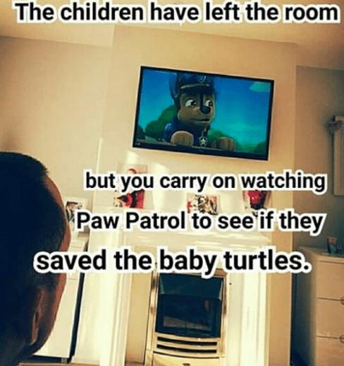 baby-turtles-rescue-paw-patrol-intense-parenting-enjoyment