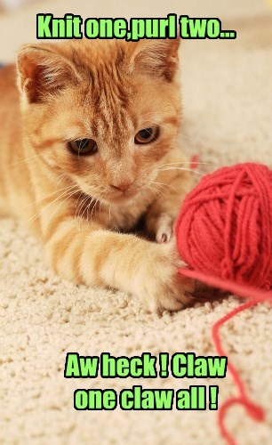 Knit one,purl two...
