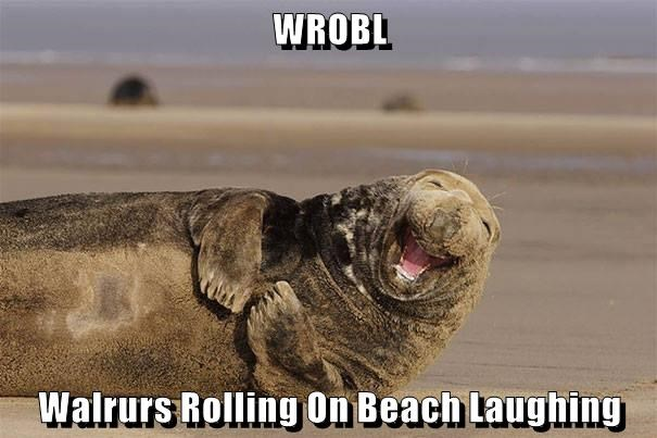 WROBL  Walrurs Rolling On Beach Laughing
