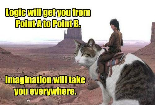 cat imagination caption logic - 8793442816