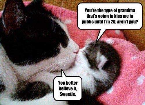 public,KISS,kitten,grandma,caption