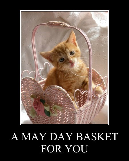 A MAY DAY BASKET  FOR YOU