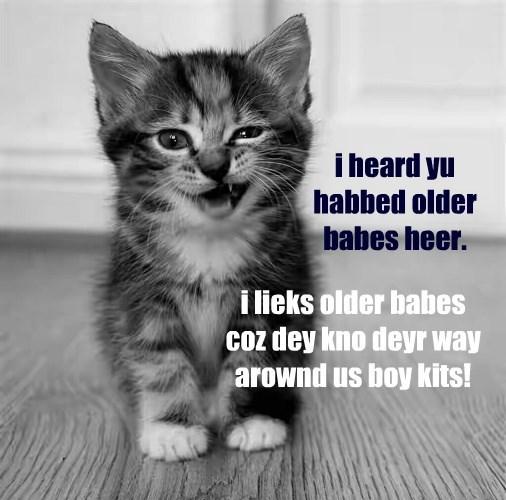 kitten babes caption older - 8793780736