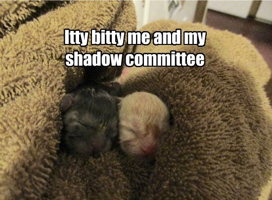 Itty bitty me and my shadow committee