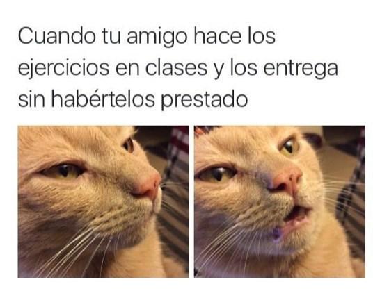 ejercicios en clase