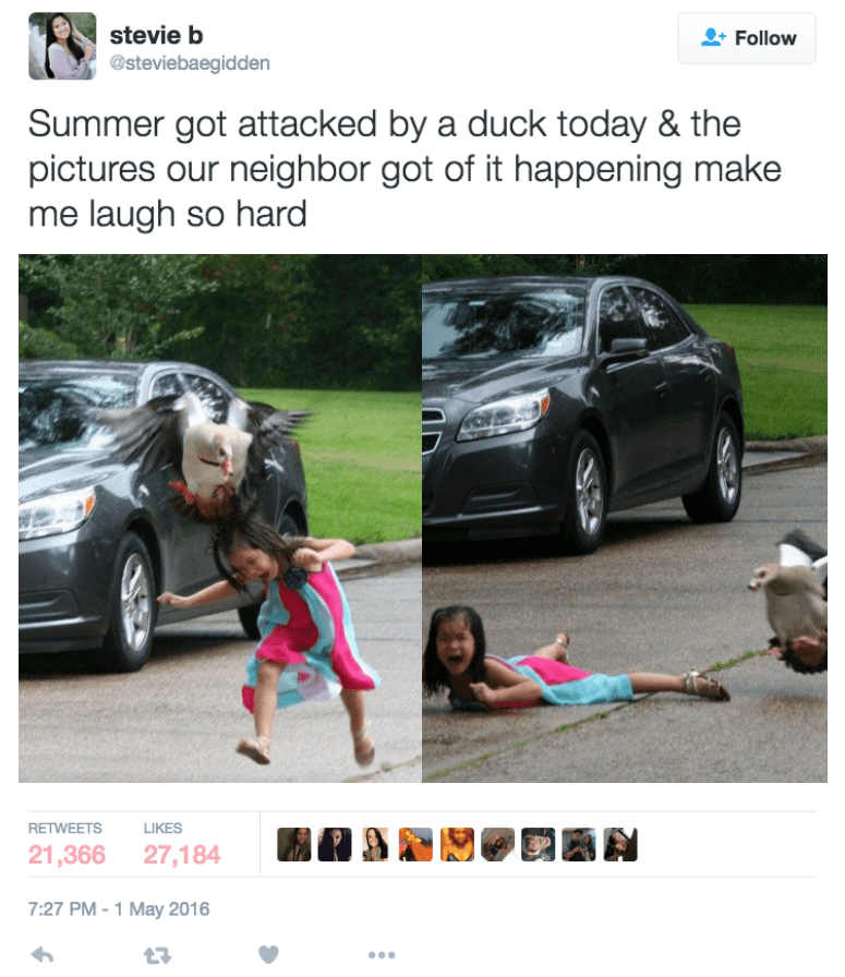 This Duck Wrecked a Kid Almost as Much as Her Mom Did Posting It
