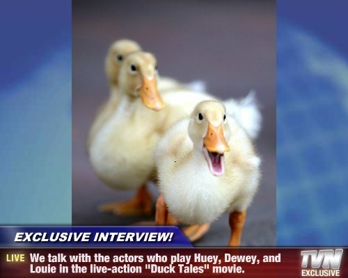 """EXCLUSIVE INTERVIEW! - We talk with the actors who play Huey, Dewey, and Louie in the live-action """"Duck Tales"""" movie."""