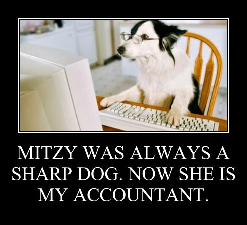 MITZY WAS ALWAYS A SHARP DOG. NOW SHE IS  MY ACCOUNTANT.