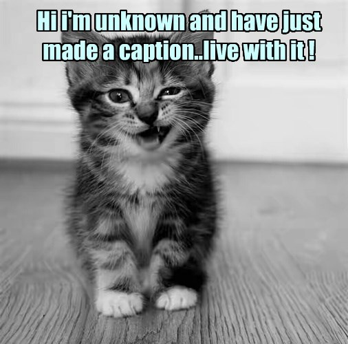 live with kitten it Unknown caption made - 8793978880