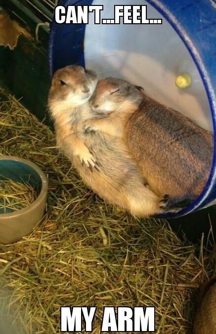 relationships sleeping dating - 8794015232