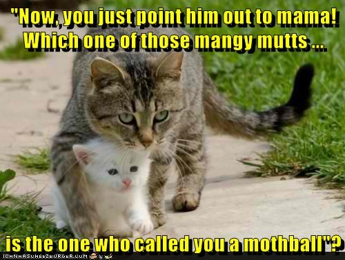 """Cat - """"Now Vou just point him out to mama! Which one of those mangy mutts is the one who calledyou a mothball ICHNMASUHE2URBERBUPM"""