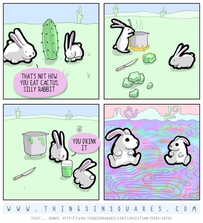 web-comics-rabbits-eating-cactus-potion-funny