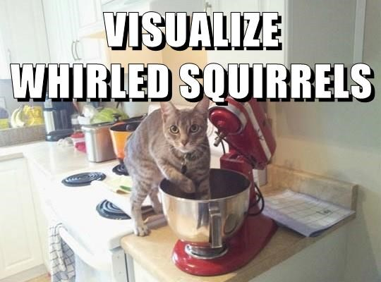 VISUALIZE WHIRLED SQUIRRELS