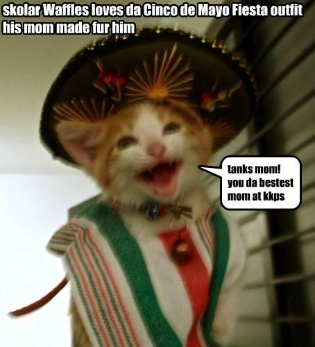 outfit cat cinco de mayo caption mom - 8794107392