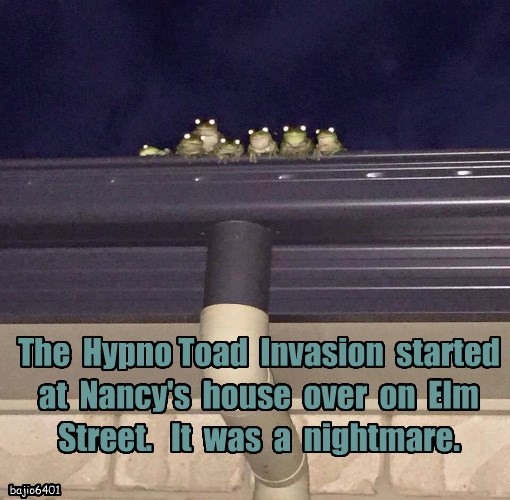 The  Hypno Toad  Invasion  started  at  Nancy's  house  over  on  Elm  Street.   It  was  a  nightmare.