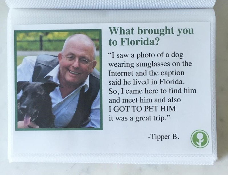 "Picture frame - What brought you to Florida? ""I saw a photo of a dog wearing sunglasses on the Internet and the caption said he lived in Florida. So, I came here to find him and meet him and also I GOT TO PET HIM it was a great trip."" Tipper B."