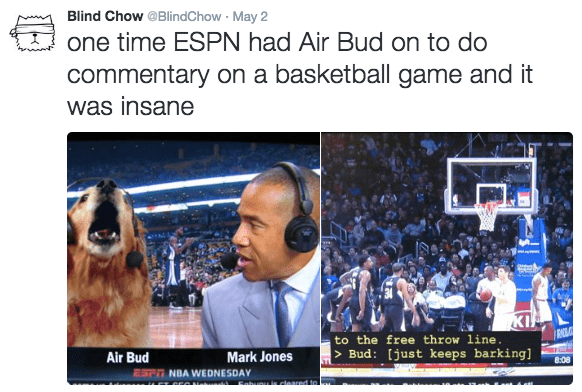 image air bud twitter Seems Like He Had a Promising Sportscasting Career Lined Up
