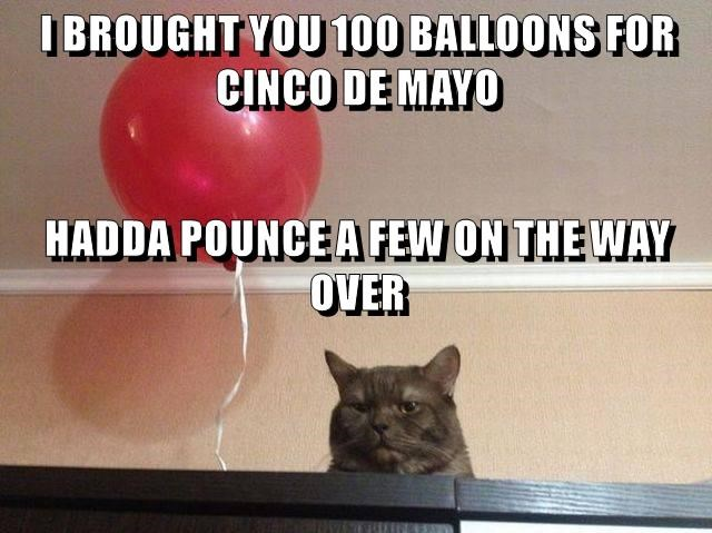 animals cinco de mayo Balloons caption Cats pounce - 8794386432