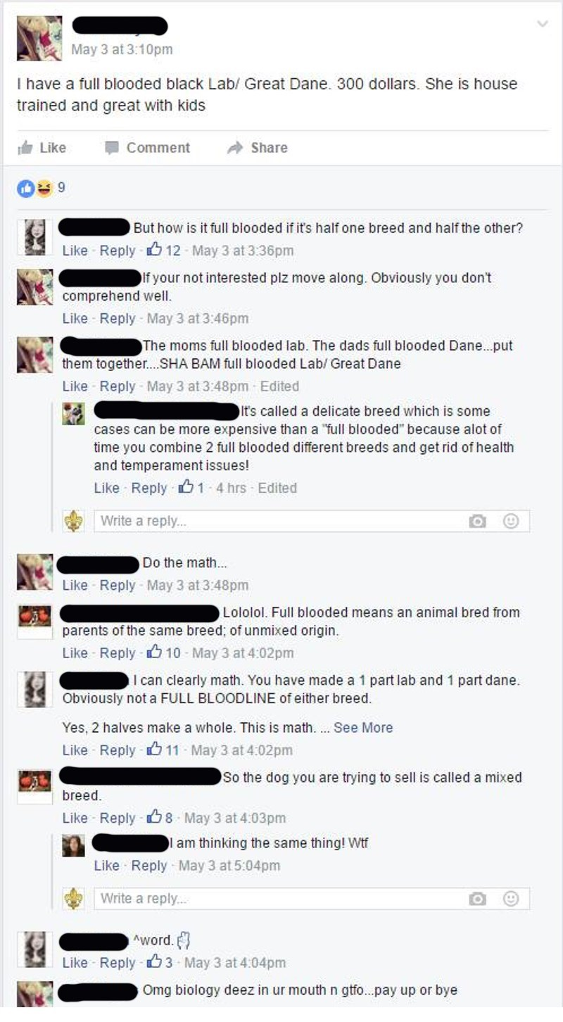 lady tries selling dogs with no idea what full bred means