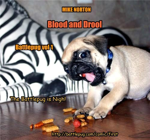 Blood and Drool