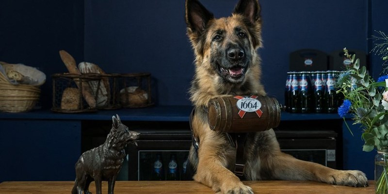 londons getting a dog pop up bar for one day only