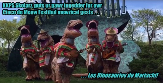 Dey be playin teh awsum toonz ub Salsa Celtica! (available at YouTube)