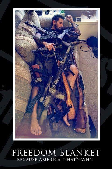 guns murica image - 8795066112