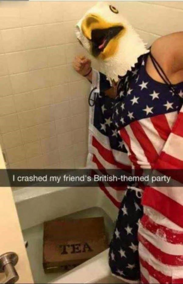 crashed murica Party america - 8795068928